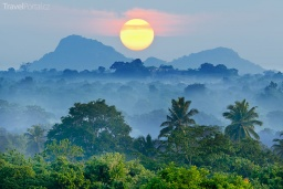 sunrise-in-the-jungles-of-Sri-Lanka.jpg